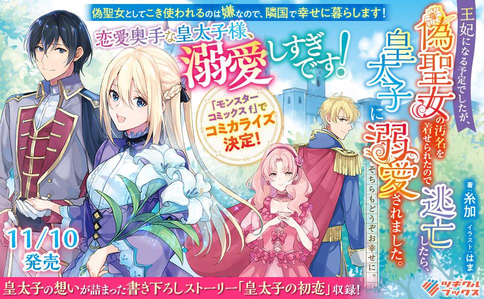 banner-20201110-niseseijyo